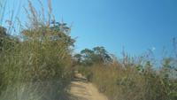 農村保健所に向かう道路、この道の先に保健所がある